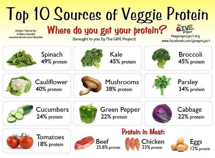 veggie-protein